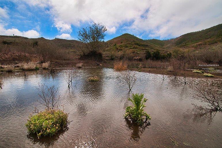 Charca de Erjos, Monte del Agua 1